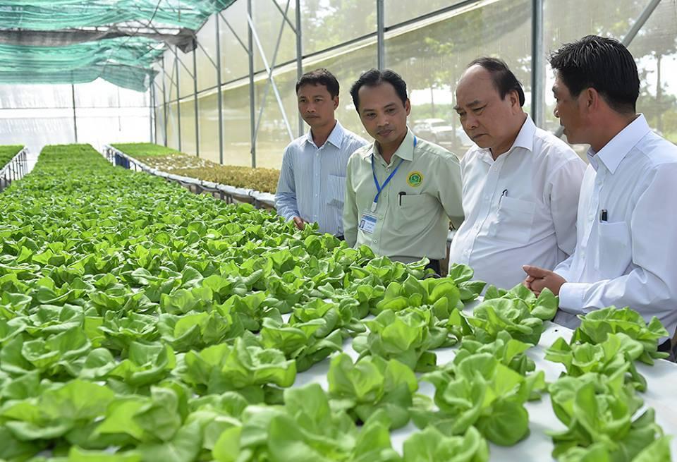 HĐND tỉnh sẽ xem xét thành lập 5 khu nông nghiệp ứng dụng công nghệ cao